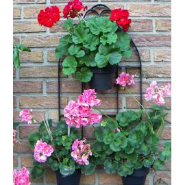 Decoratief metalen bloemenraam met 3 hangers